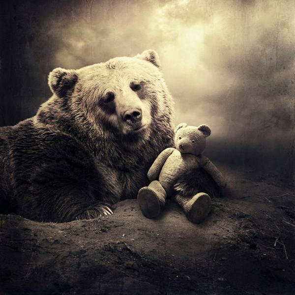 animals digital surrealism bears sarolta ban 1600x1600 wallpaper_wallpaperswa.com_66